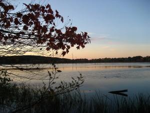 mill pond wayland