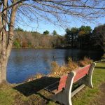 Rosemary Lake Needham MA